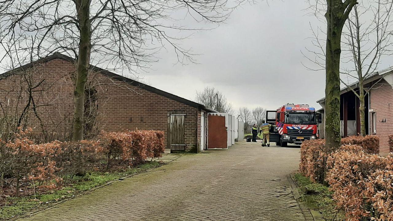 Grote hennepkwekerij aangetroffen in Bergstraat Geffen