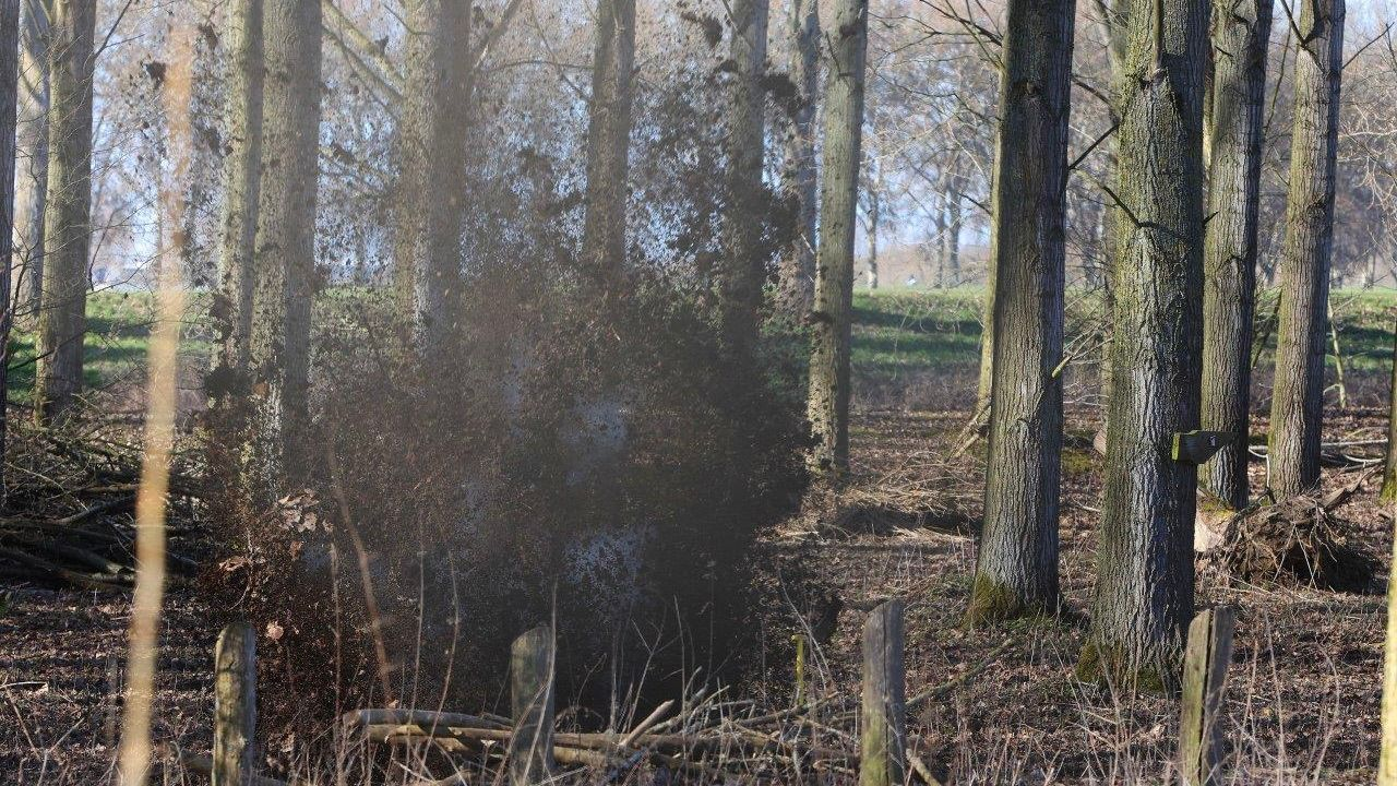Verdachte stof tot ontploffing gebracht in Den Bosch