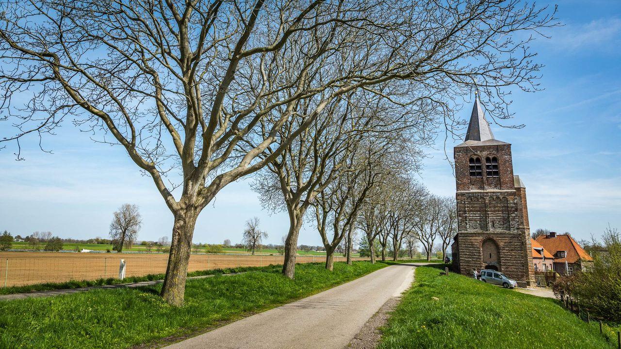 Nieuw meldpunt voor klachten en oplossingen verkeersproblematiek Maasdijk