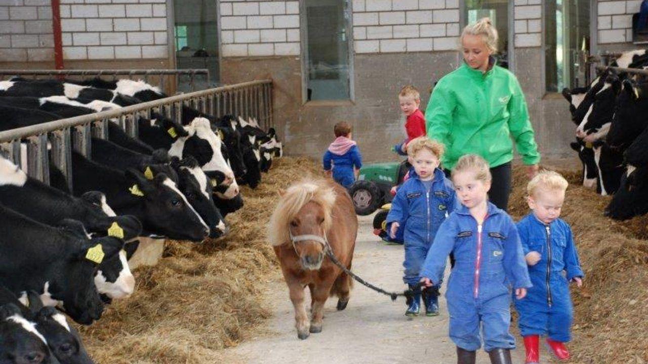Agrarische kinderopvang de Dierenvriendjes uit Nistelrode mag tóch uitbreiden