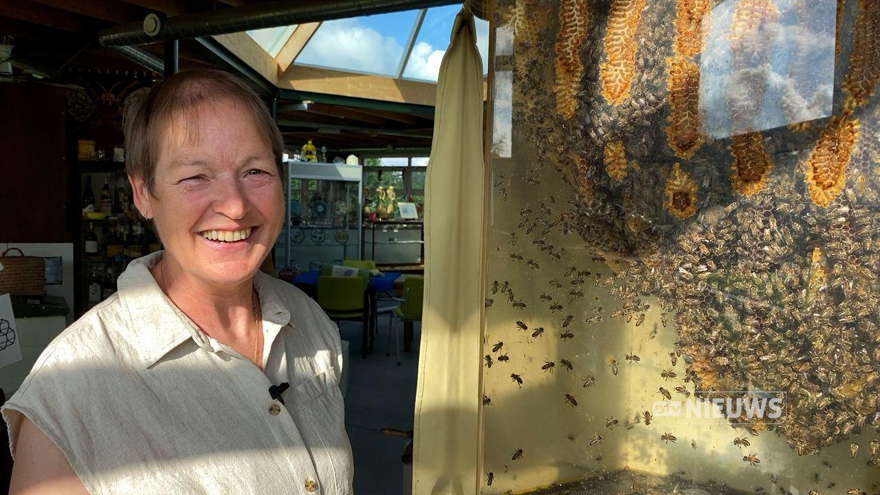 In Geffen staat een bijenteeltmuseum: 'Wij kunnen veel van ze leren'