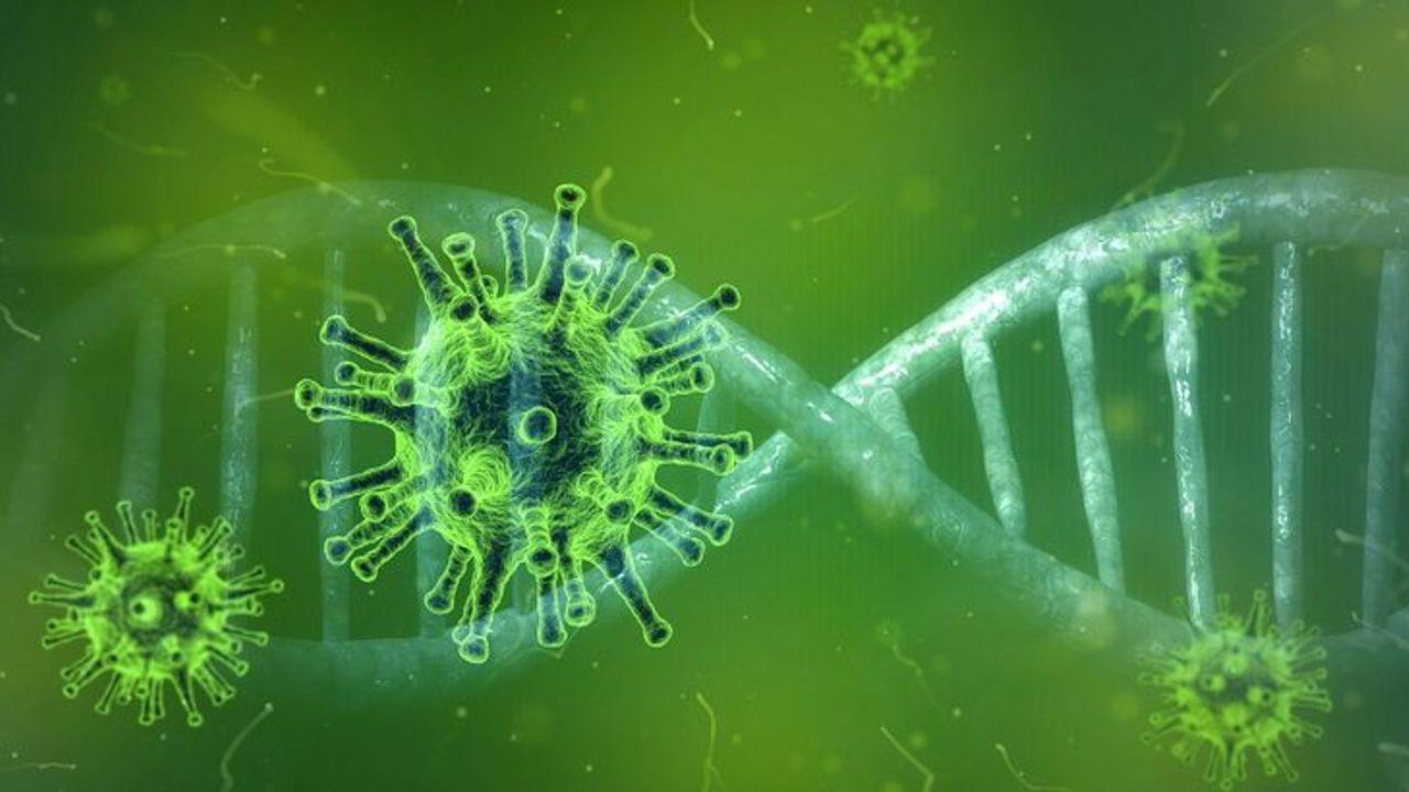 Steun voor bedrijven die dupe zijn van coronavirus