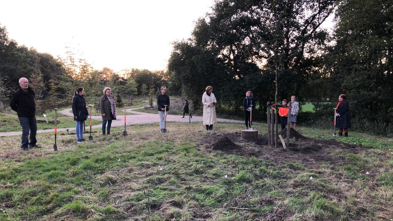 Herinneringsboom geplant in Herinneringsbos voor troost vanwege corona