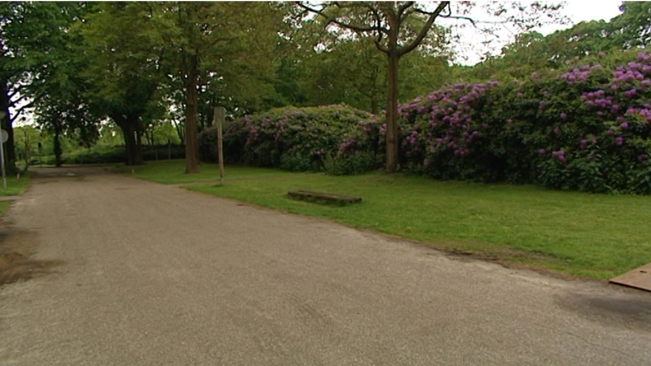 VVD-Leefbaar Uden wil sportpark opknappen