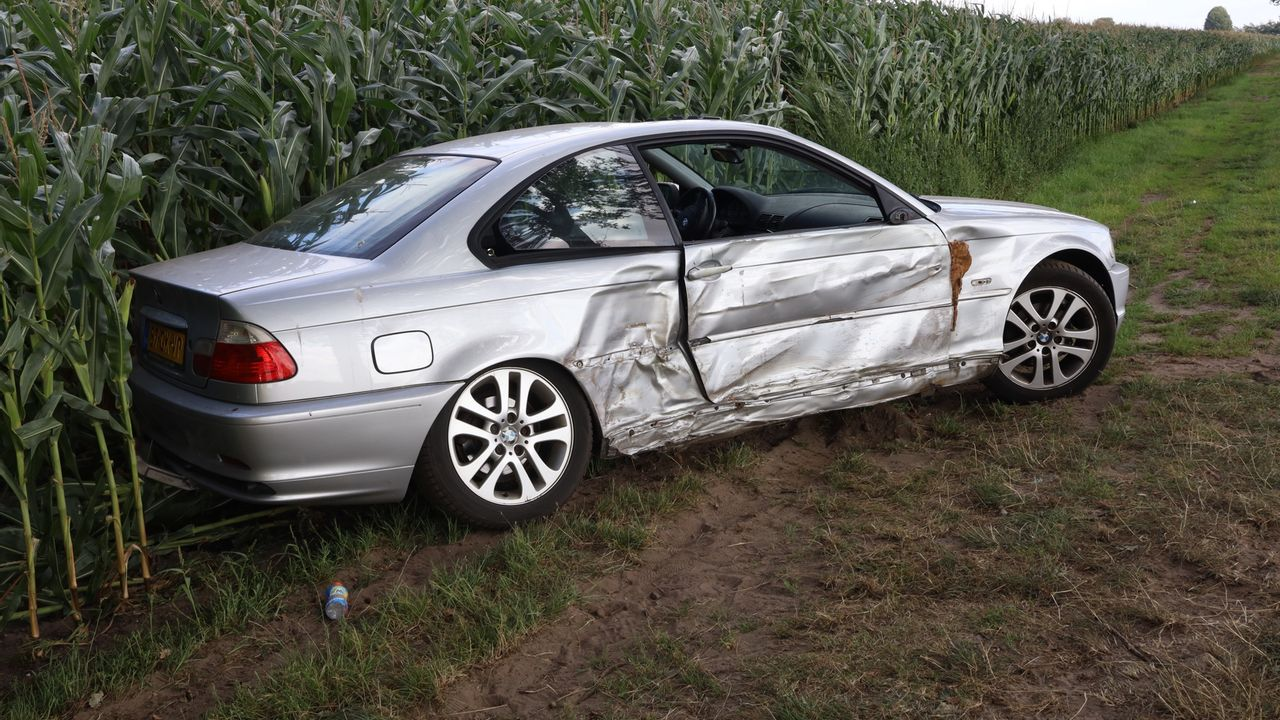 Auto komt via boom in maïsveld tot stilstand in Odiliapeel, drie gewonden