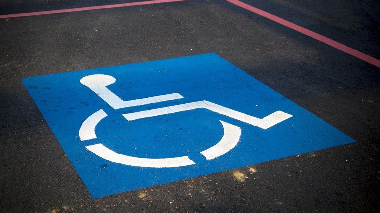 Bossche gebruikers van gehandicaptenparkeerplaatsen nemen nieuwe app in gebruik