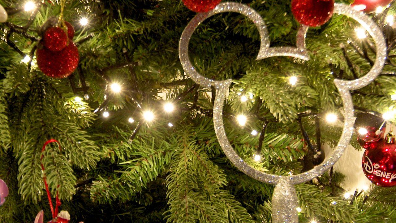 Bijzondere kerstsfeer bij huis in Herpen