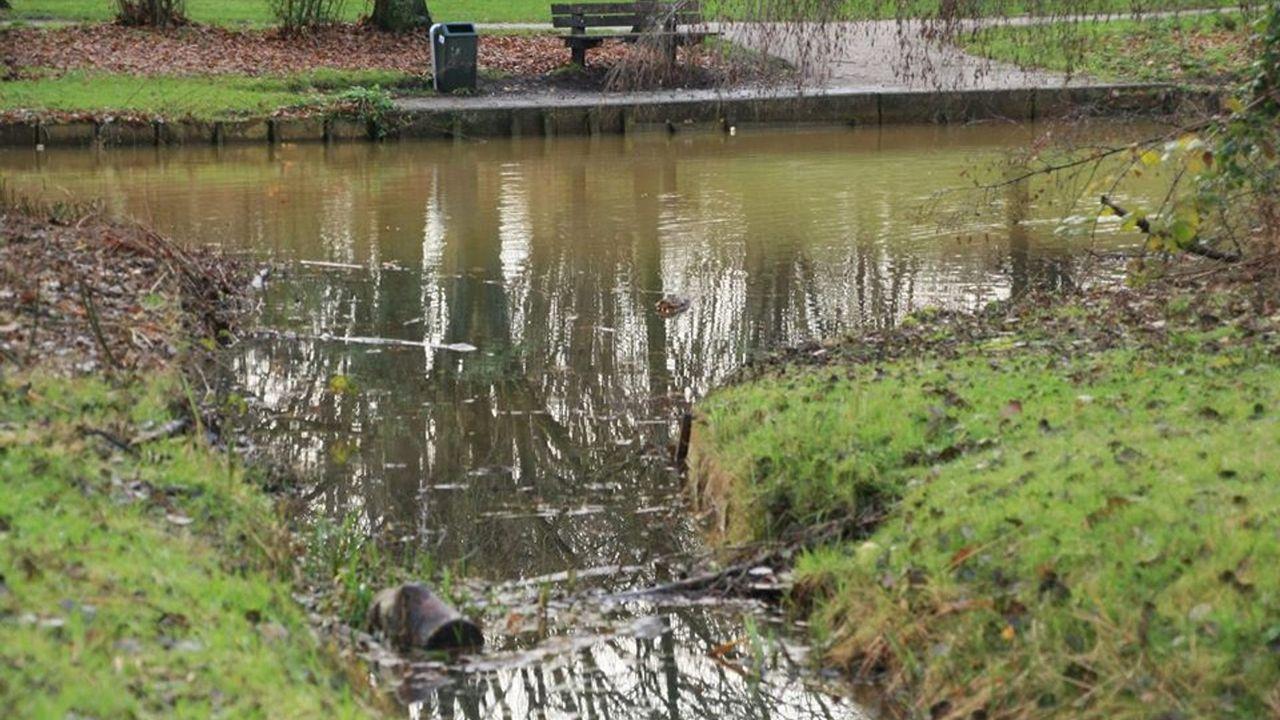 Ook vijver Mellepark in Uden besmet