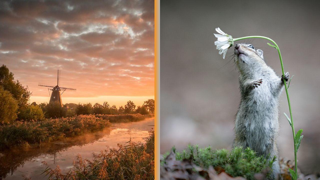 Twee fotografen uit de regio winnen publieksprijs in finale van National Geographic