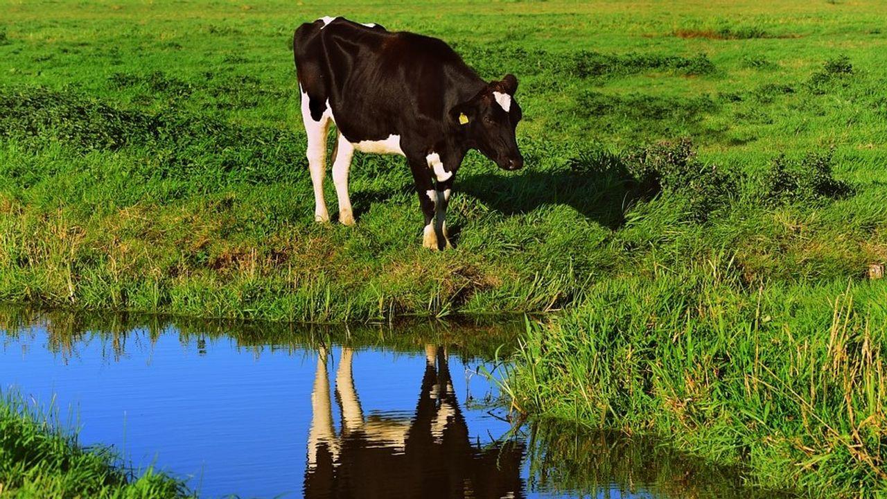 Waterschap Aa en Maas roept op tot zuinigheid met water