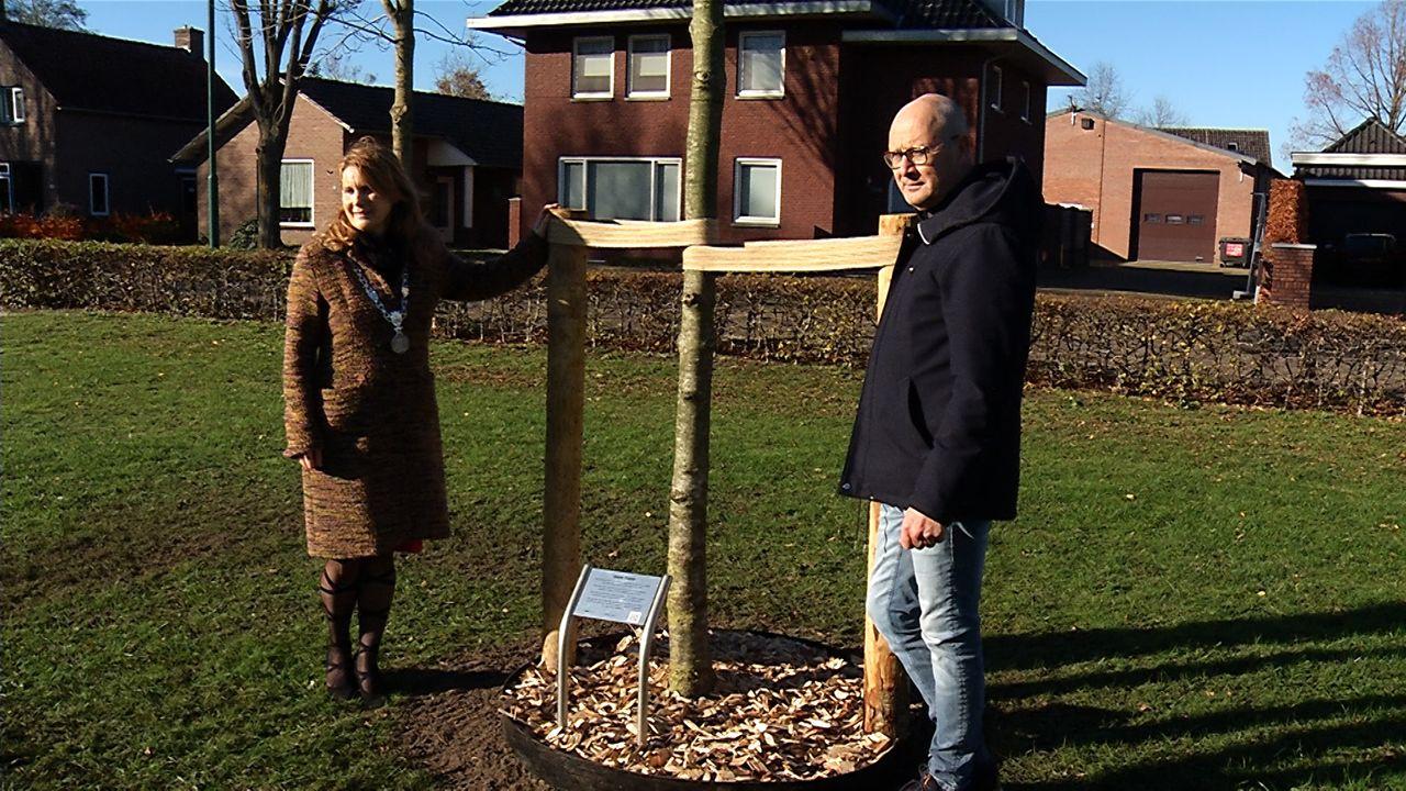 Eerste plaquette bij herinneringsboom onthuld in Loosbroek
