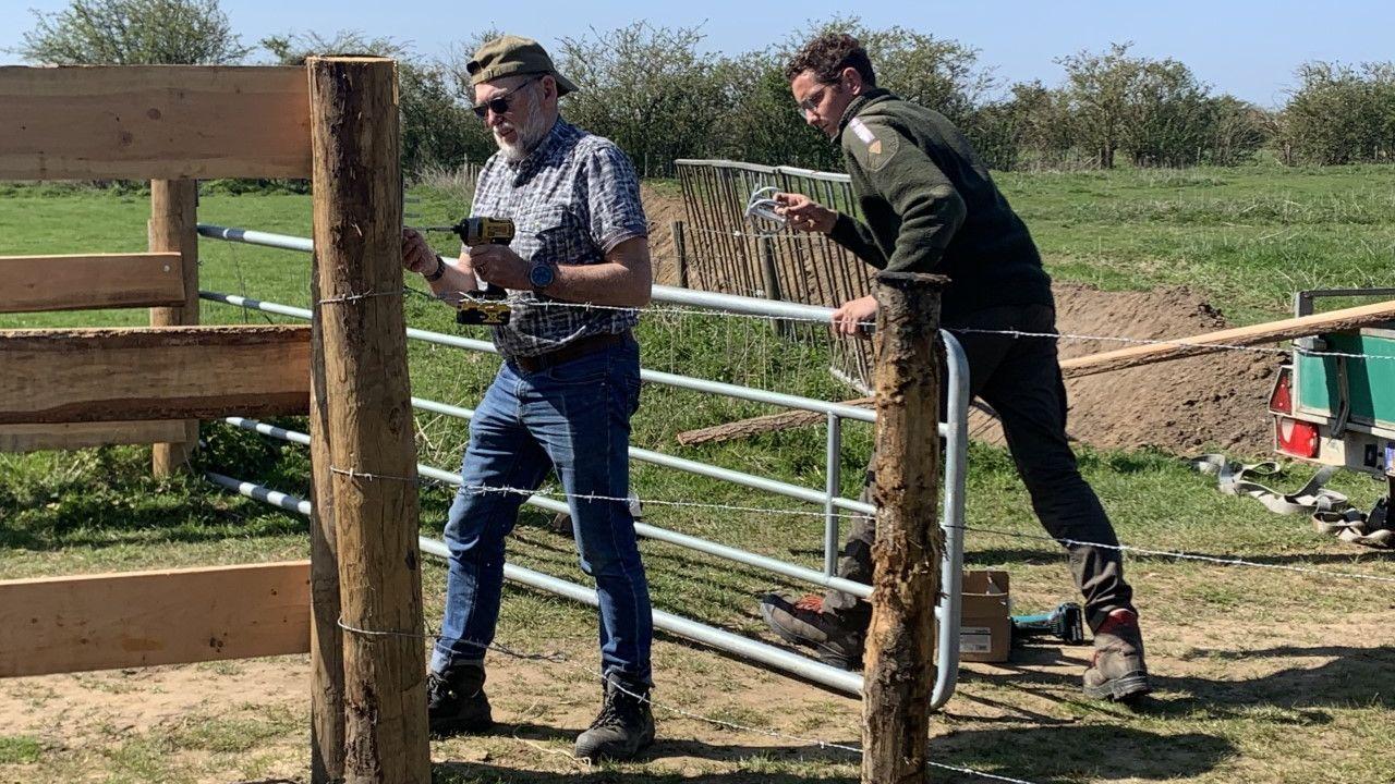 Doorknipte afrasteringen en gesloopte hekwerken in de uiterwaarden aan de Maas: 'Kan grote gevolgen hebben'