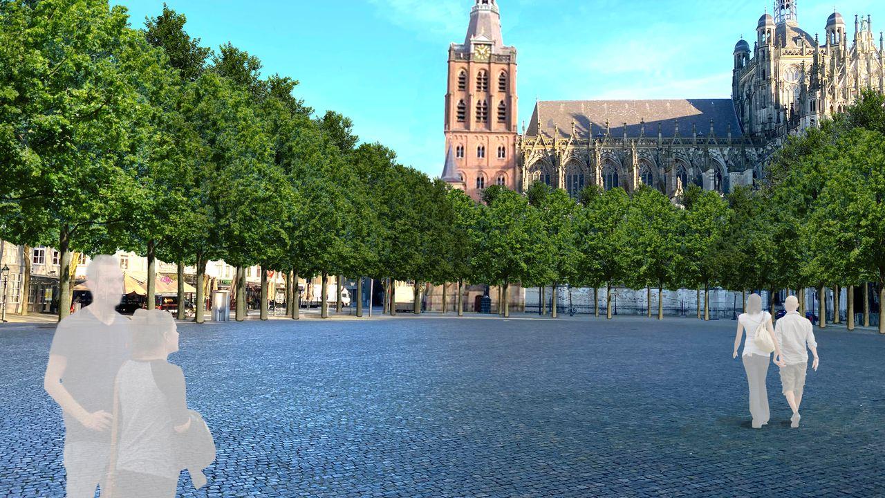 Bosch Belang: 'Wacht kastanjes in Prins Hendrikpark hetzelfde lot als kastanjes op de Parade?'