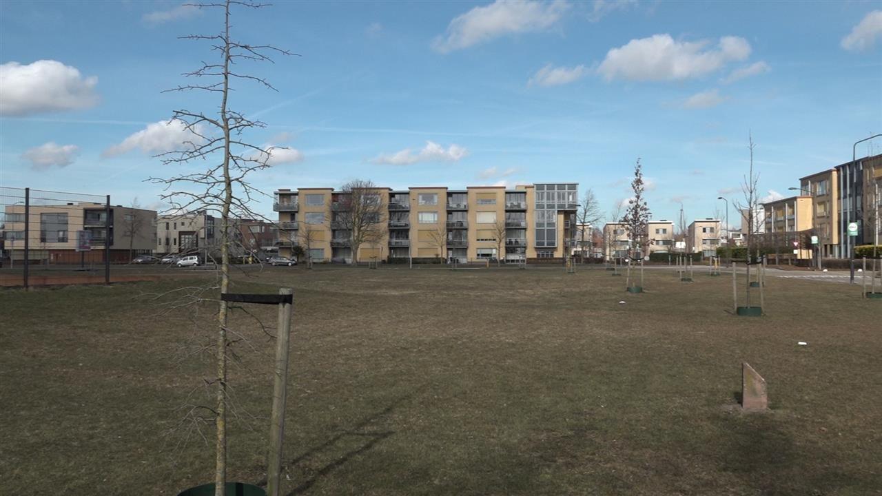 Klankbordgroep Uden-Zuid heeft niets tegen woningen in Sesterpark, maar vindt vijftig veel te veel
