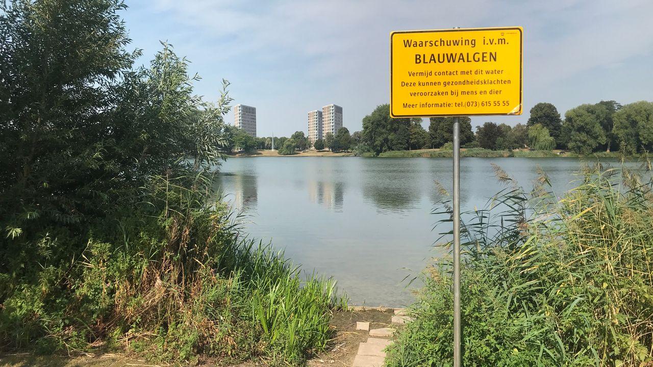 Blauwalg gevonden op meerdere plekken in Den Bosch