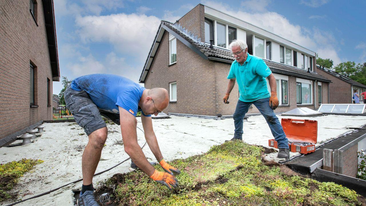 Ruim 500 vierkante meter aan groene daken erbij in Engelen en de Vliert