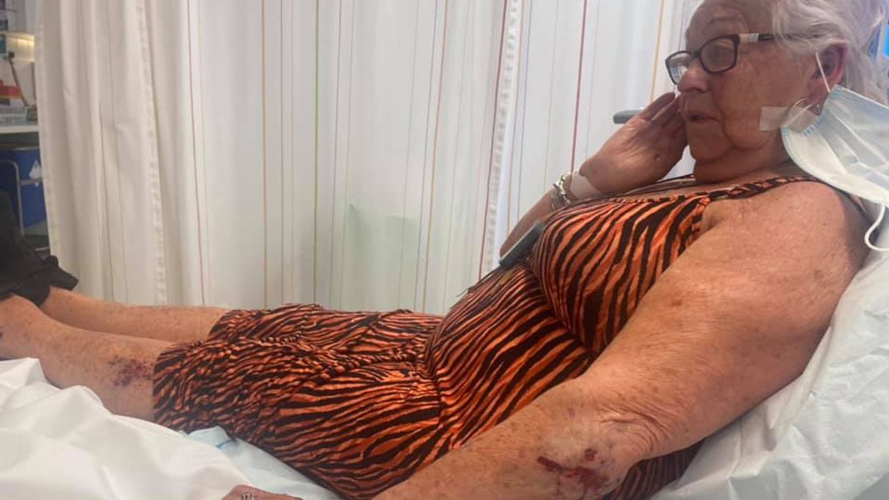 80-jarige vrouw aangereden in Den Bosch, slachtoffer op zoek naar dader