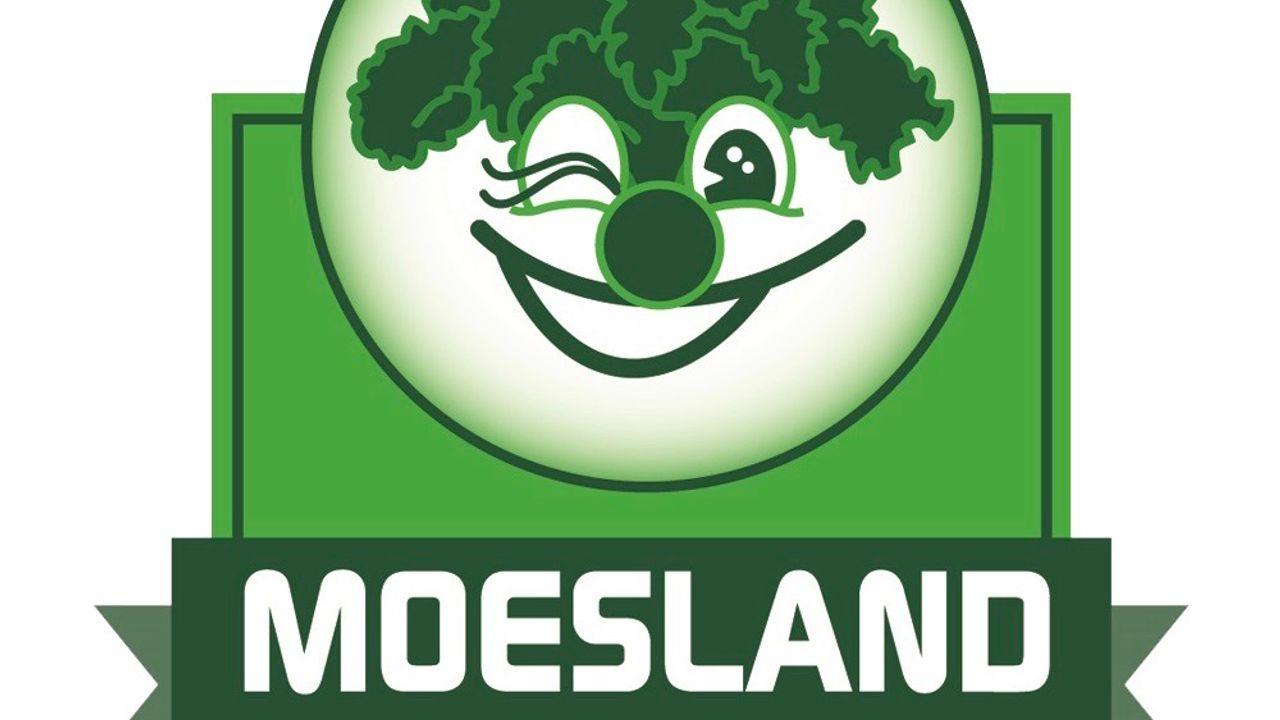 Ook in Moesland (Schaijk) zijn de carnavalsoptochten van de baan