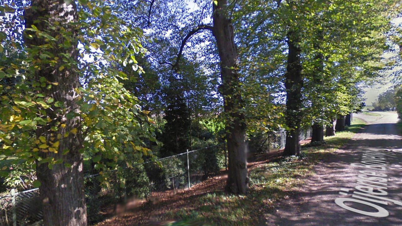 Bomen bij Kasteel Oijen staan op omvallen