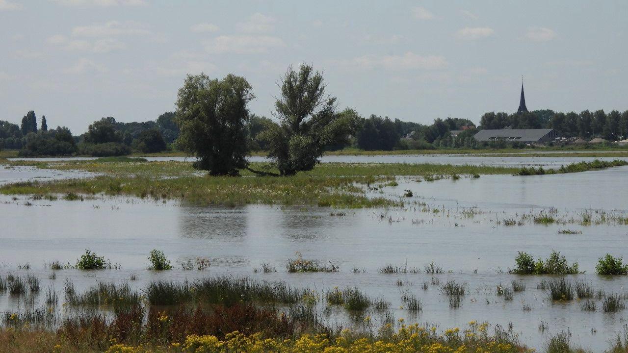 Piek hoogwater Maas trekt vandaag en morgen voorbij