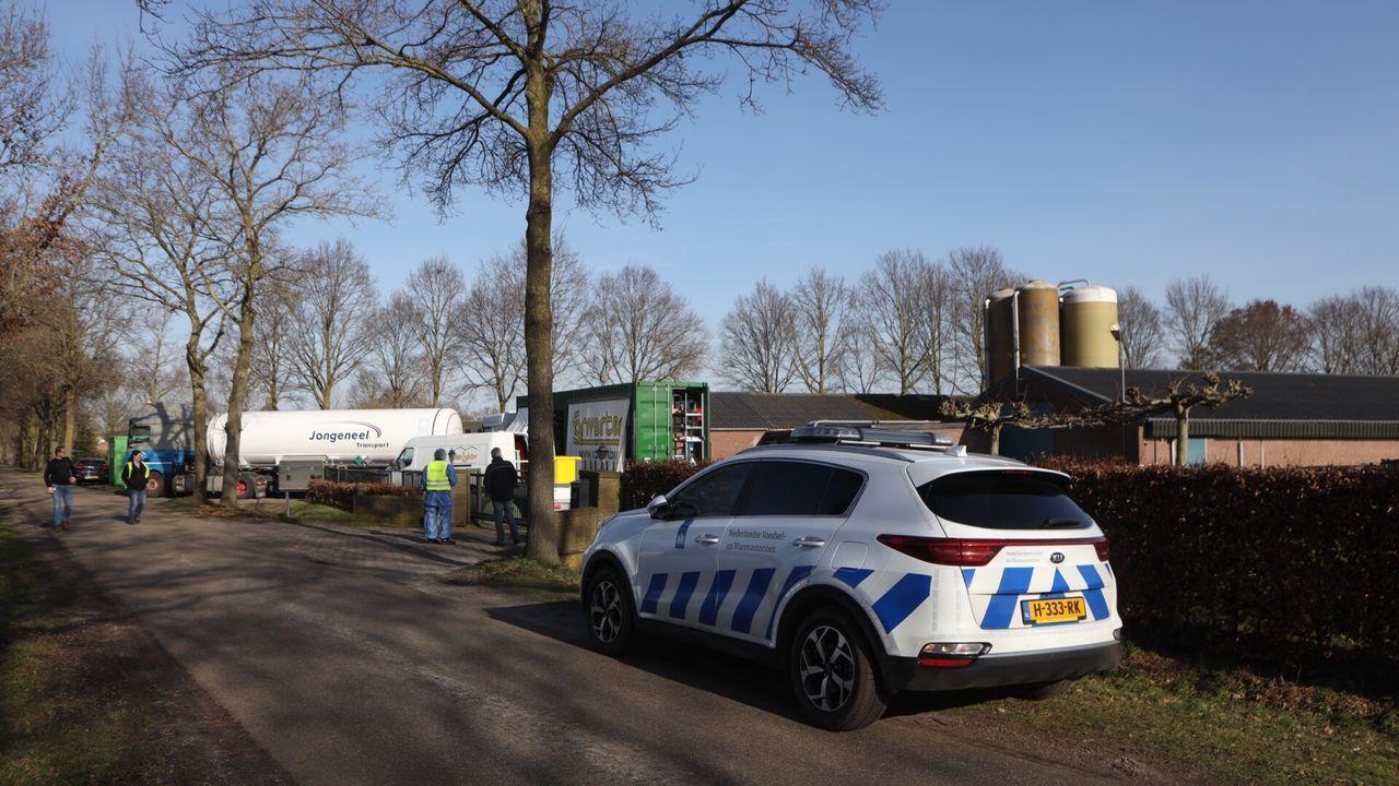 Vogelgriep bij kippenbedrijf in Sint-Oedenrode: vervoersverbod in deel regio