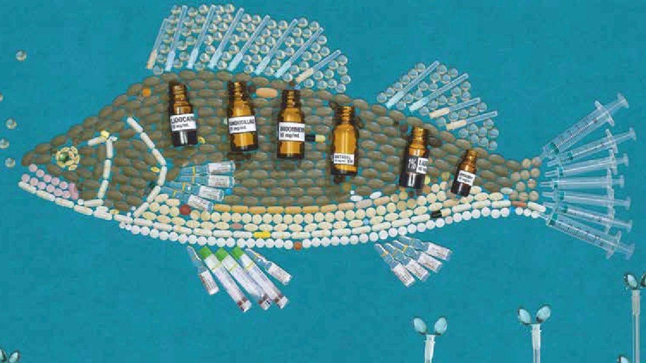 Week van Ons Water tegen verkeerd weggooien medicijnen