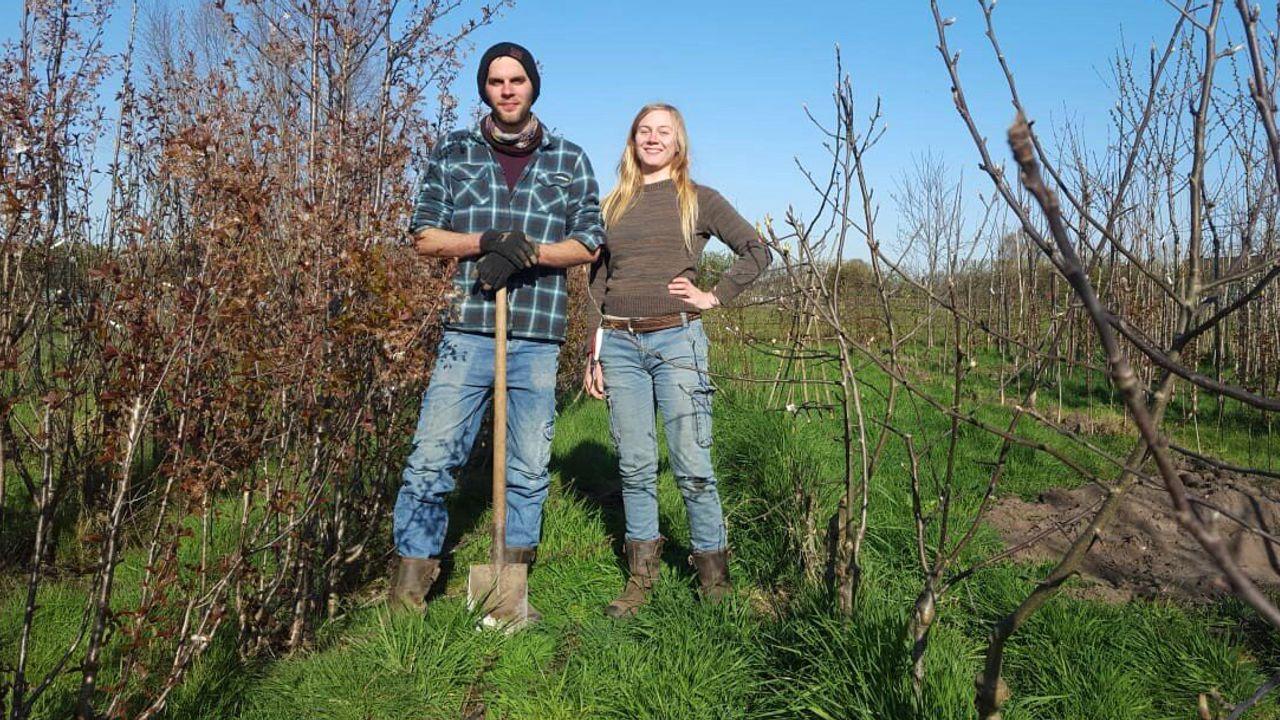 Jade wil 25.000 bomen in Odiliapeel: miscommunicatie zorgt voor vertraging