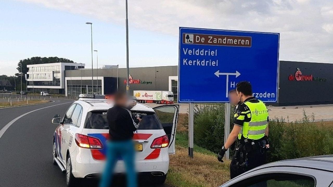 Ossenaar onder invloed vlucht voor politie Bommelerwaard