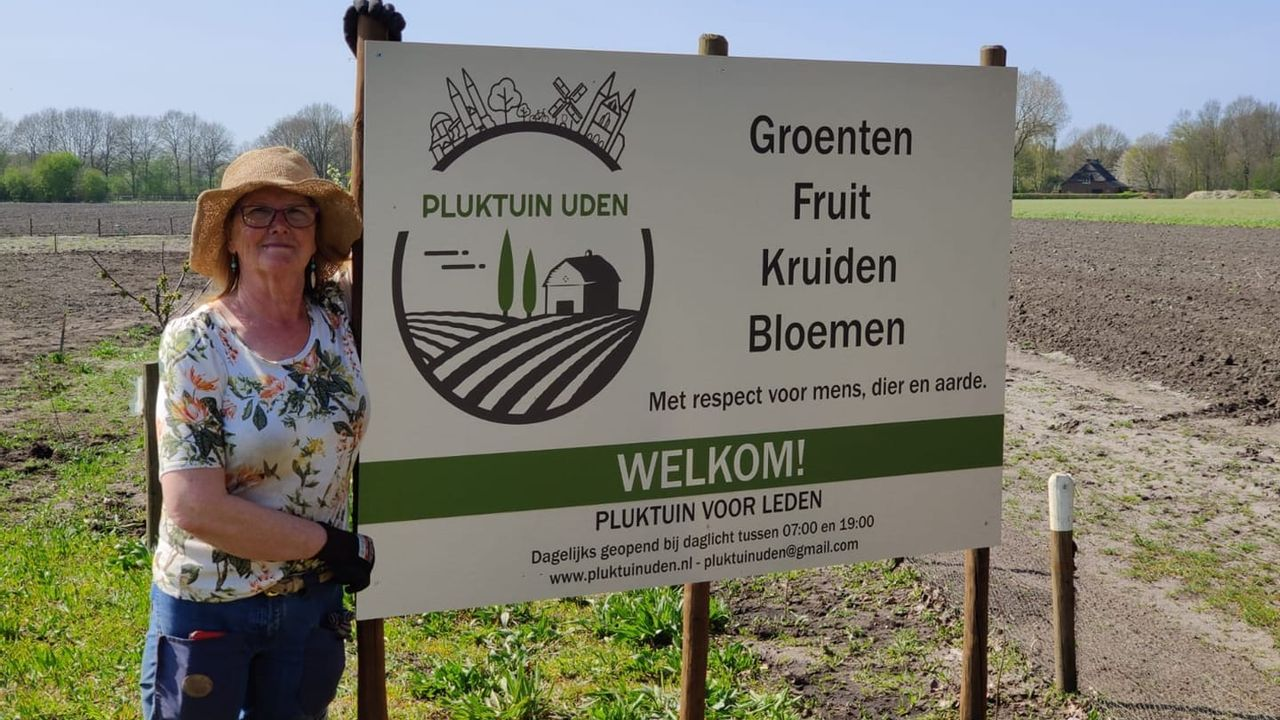 Pluktuin Uden stopt met verkoop in Bitswijk na meerdere diefstallen
