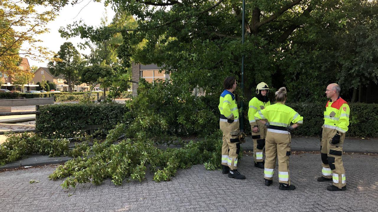 Een grote tak veroorzaakt overlast in Sint-Oedenrode