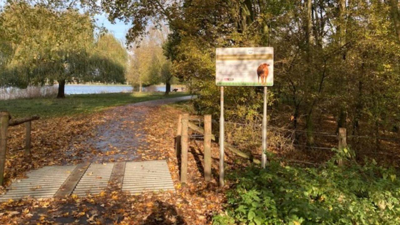'Spekgladde wandelpaden' in Van Zwietenpark Den Bosch door koeienvlaaien en bladeren