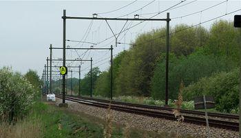 Treinen moeten in Geffen langzamer rijden omdat er een dassenburcht in de spoordijk zit. ProRail wil daarmee verzakkingen van het spoor voorkomen.