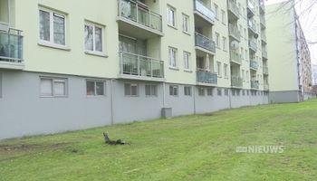 Na de zomer nieuwe start met afvalinzameling in Udense flatwijk
