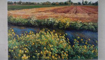 Zondag 9 augustus: rondleidingen Fred Schley in museum Slager
