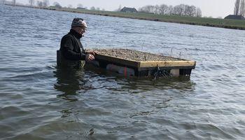 Gaat het vlotten met de visdief