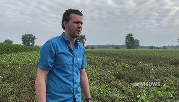 Miljoenen euro's schade voor Brabantse boeren door overstromingen Maas